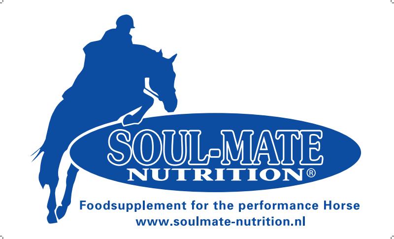 logo soulmate spring